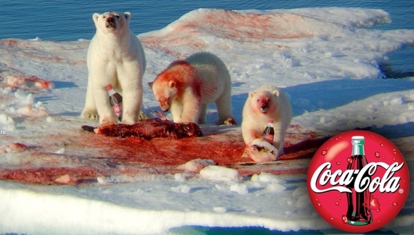 Polar Bears blood Coke