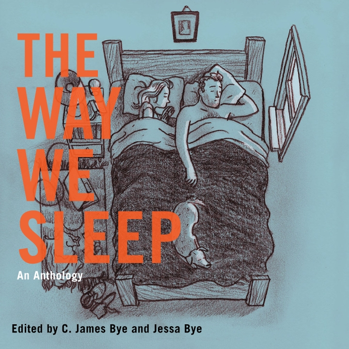 Single Sentence Review: The Way We Sleep   Vouched Books